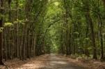 Seram! 5 Destinasi Wisata Ini Memiliki Cerita Mistis dan Menyeramkan